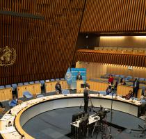 Выступление министра Виорики Думбрэвяну на 73-й Всемирной ассамблее здравоохранения по внедрению Международных медико-санитарных правил