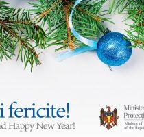 Mesajul ministrului Sănătății, Muncii și Protecției Sociale, Viorica Dumbrăveanu, la sfârșit de mandat și cu ocazia sărbătorilor de iarnă